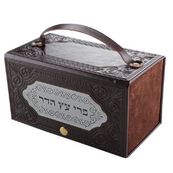 Leather Like Etrog Box With Laser Cut Silver Plate